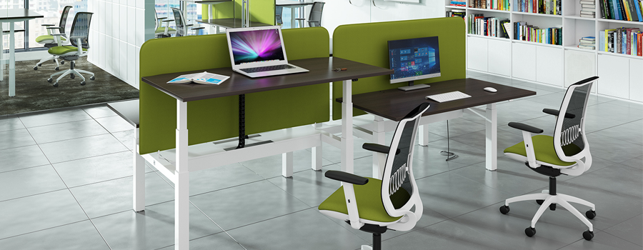 Sit Stand Electric Desking