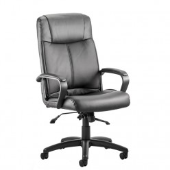 Piazza Deluxe Leather Chair