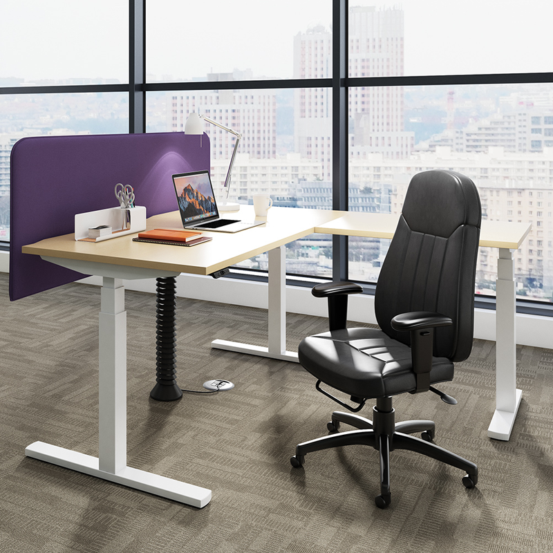 Sit Stand Executive Bundle