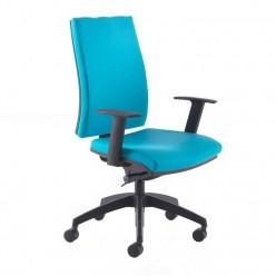 Ottawa Operator Chair
