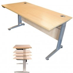 Sit Stand Height Adjustable Electric Desk