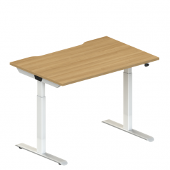Tek Sit Stand Single Desk