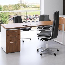 Ranst Single Pedestal Desk