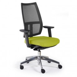 Adina Mesh Task Chair