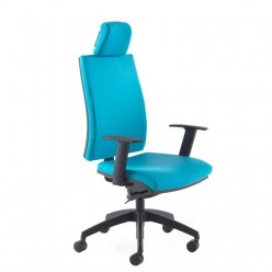 Emilia Orthopaedic Office Chair