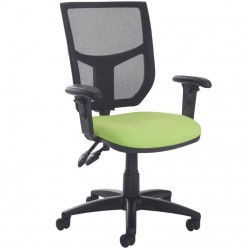 Shila Mesh Task Chair