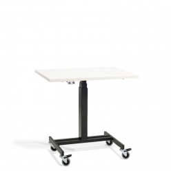 LD3 Mobile Sit Stand Desk