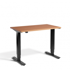 LD3 Homeworker Sit Stand Desk